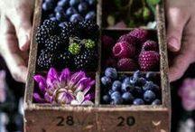 Food -drool- photography