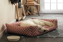 SPACES | for your pet / Creating spaces and places for your dog, cat or other furry friend's accessories and bed at home. ~ by Jennifer Adams #LoveComingHome