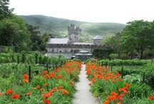 Donegal Gardens / Beautiful gardens to visit in Donegal