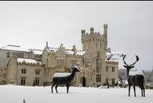 Dreaming of a White Xmas? / I know we are at Solis Lough Eske :)