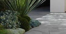 LANDSCAPING / This board collects landscaping ideas and landscaping designs. Modern landscaping