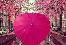 Heart Shaped Umbrellas / Heart shaped umbrellas - 12 colours, windproof, sturdy, and perfect for photographs - come rain or shine!  https://www.loveumbrellas.co.uk/collections/last-minute-gifts/products/heart-umbrella