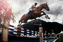 Eventing & Showjumping / by Kristy Stith