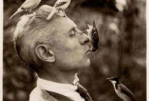 Bird/man