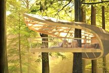 Tree Structure Tree House or Tree Architecture / NCEA Level 2 Spatials Architecture project