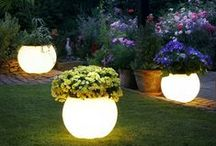 Garden Lighting / Placing unique and creative lighting add a special touch to the landscape. You garden, courtyard or patio will always benefit from imaginative and distinctive lighting and you will have fun finding that special feature that is just right for you.