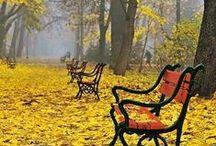 Seasons / Seasons