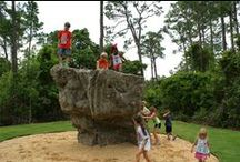 Playgrounds / Climbing Boulders Playground Accessories Climbing Walls Climbing Panels Custom Playgrounds