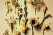 Flowers / by Putnam Griffin Wedding