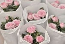 Wedding Favours / Creative favours for the guests