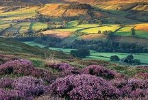 Beautiful Yorkshire / I'm a Yorkshire lass! It is a beautiful place...please enjoy... / by Lynne Gittens