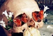 tzompantli / skulls