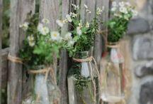Garden / Project zomer 2014