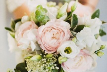 apricot country chic / Summer Wedding in apricot, mint and creams. country garden chic weddings