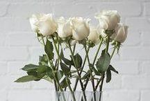 Inne / Others / Kwiaty, kompozycje kwiatowe