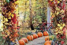 Ahh...Autumn