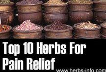 turtles home remedies