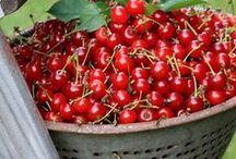 Fruits / by Itala Pedrazzini Losada