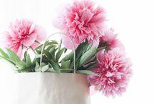 Floral | garden