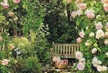 Garden & outdoor prettiness