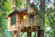Tree House! / I LOVE TREE HOUSES!! Especially those that care for the trees they're built on,  keep a playful whimsical touch in the design, and integrate well in their environment. I would like to own several in various parts of the world one day :)