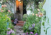 Gardening / Garden giardino giardinaggio marciapiede vasi fiori piante esterno arredo fioriere aiuole