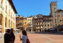 Tour Guide in Tuscany, Italy / Private guided tours for families, individual travellers, small groups who wish to explore the best of Tuscany's beauty, art, food, wine, with a professional guide. Visit Cortona, Arezzo, Siena, Montepulciano, Pienza, Montalcino, Chianti, Florence with me and you will live a unique experience ! www.tuscantoursandweddings.com