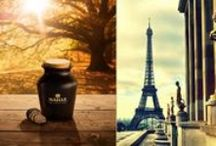 My Grand Taste of Paris / Bonjour Paris! Venture to the City of Light, Paris, France, on a grand cultural and culinary journey for your senses in the Grand Taste of Paris contest! (2015-2016) Ends January 31, 2016–Enter now!  / by Maille US