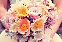 Wedding Flowers & Centerpieces / Wedding flowers & centerpieces