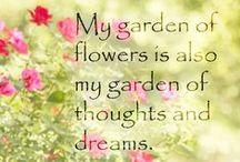 My Beautiful Garden! / Gardening and tips / by Yasmin Barriera