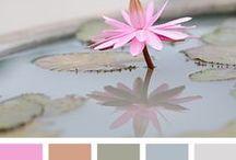 colour charts / palety kolorów