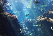 Underwater / To Vangelis