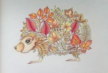 Coloring Book / Johanna Basford-Enchanted Forest/Secret Garden Picture by Nora Varga