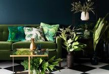 J U N G L E   L I V I N G / Interior styles with lots of greenery and some colorful aspects, like living in the jungle.