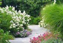 Ogrody / garden, etc.