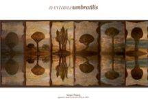 Danubius umbratilis / Collezione di dipinti