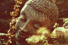 India / by MJ Salas