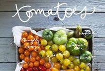 Tomatoes   Fun Facts
