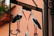 Alsace. Eguisheim.