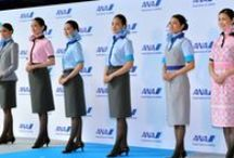 NH-All Nippon Airways/(ANA)全日本空輸 / Airline