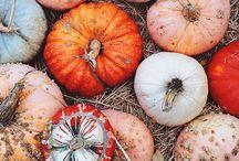 pumpking / Pumpkins inspiration! Ideas for Halloween evening! Sweet October!