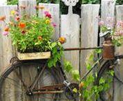 Garden Art / Add some creativity and fun with garden art.