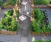 Raised Beds & Containers - Raised Garden Beds / Your behind-the-scenes guide to creative container and raised bed gardening.