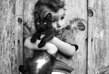 Niños y gatos / by Sara Rodríguez