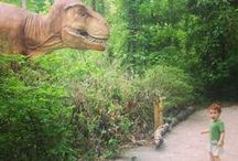 Dino Discovery at the Birmingham Zoo