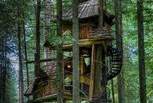 Treehouses / by Hurricane Tyler