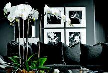 Beautifully / Elegant home decor. Luxury designe
