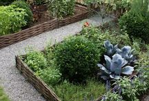Gardening / by Marimercy