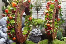 Autum flowers and wreaths / Herfst