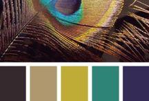 cores combinações